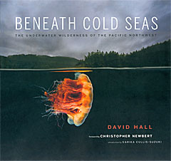 Beneath the Cold Seas