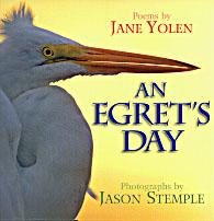 Egret's Day