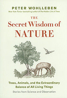 Secret Wisdom of Nature