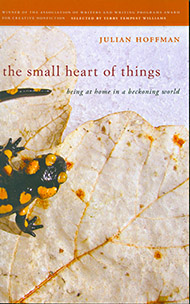 Small Heart of Things