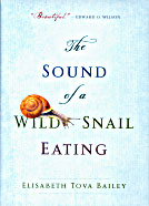 Sound of Wild Snail