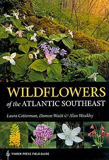 Wildflowers of the Atlantic SE